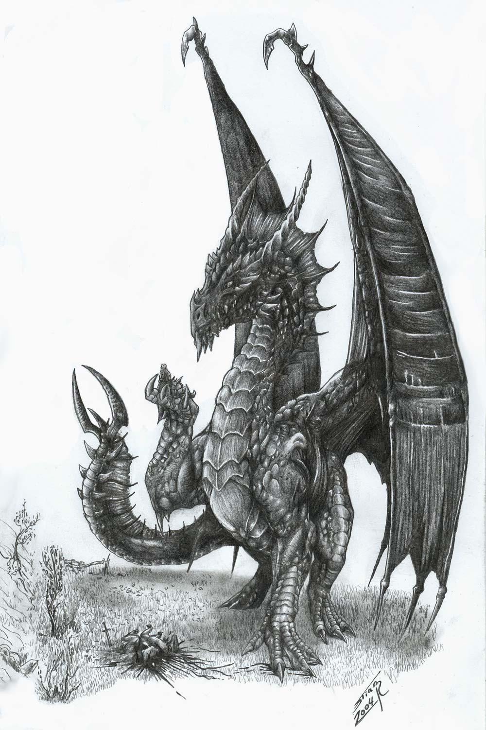 Dragon - Aile de dragon dessin ...
